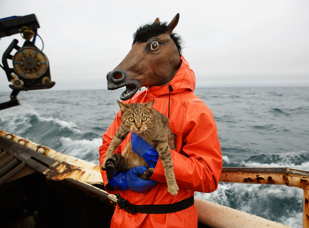Kitty and Horse Fisherman