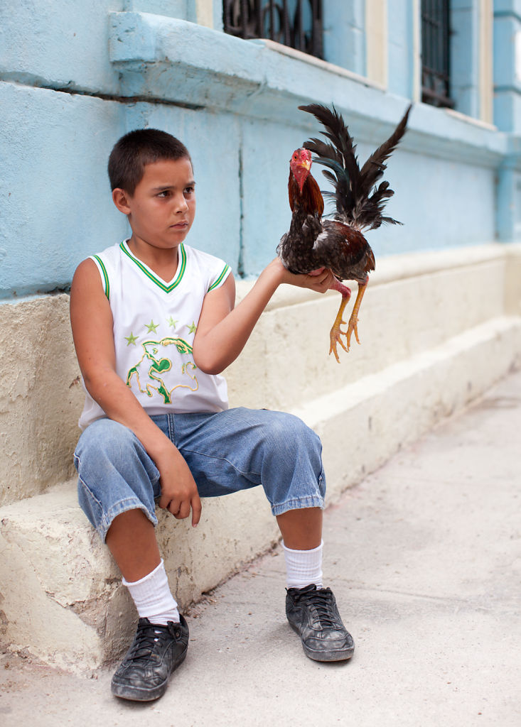 Boy and Rooster