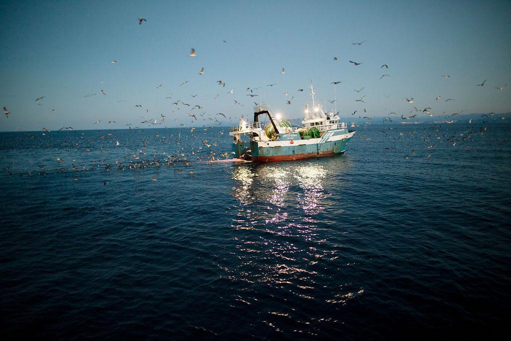Untitled, Basque Trawler